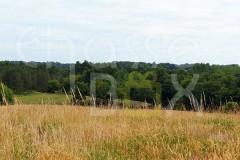 Perdrix Faisans en Dordogne