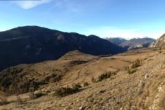 Approche au Cerf dans l'Aude
