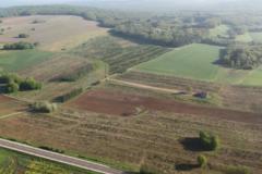 Perdrix Faisans en Haute Saône