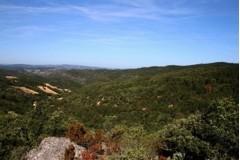 Région Langudedoc Roussillon