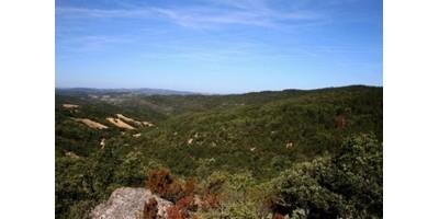 Weekend Petits Gibiers dans l'Aude