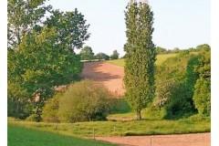 Approche Brocard en Dordogne