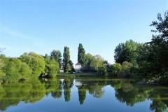 Bécasse en Indre et Loire